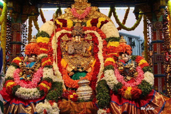 Govindaraja-Swamy-float-festival-1