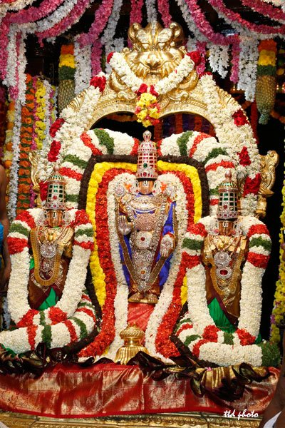 Venkateswara-swamy-float-festival