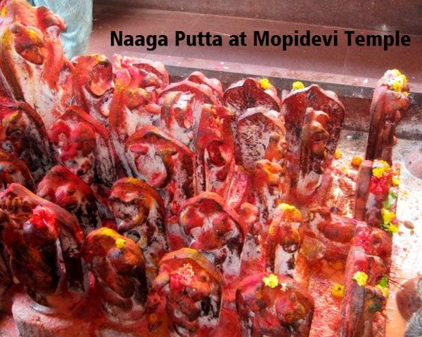 Naaga-Putta-at-Mopidevi-Temple