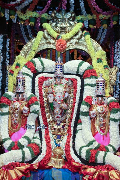 Venkateswara swamy along with Sridevi and Bhudevi