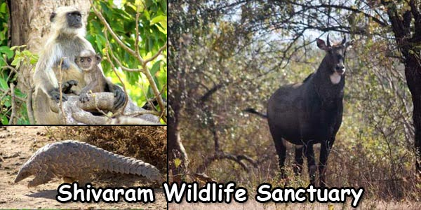 Karimnagar Shivaram Wildlife Sanctuary