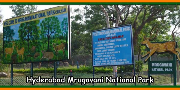 Hyderabad Mrugavani National Park