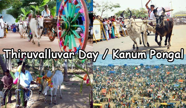 Thiruvalluvar Day Kanum Pongal