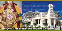 Sri Holy Tree Balasubramaniam Temple Singapore