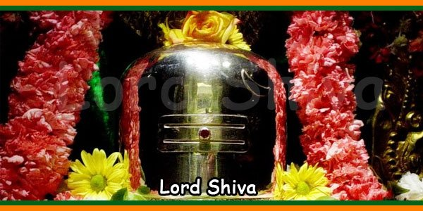Sadashiva Ashtakam is an Stotram dedicated to Lord Shiva. Those who chant this Ashtakam daily will be blessed with health and wealth in their life. This stotra is from Halasya Puranam, and is a prayer to Sundareswarar of Madurai. This is written by Sage Pathanjali one of those for whom Lord Shiva danced in Chidambaram. Here goes the English text or lyrics of Sadasiva Astakam. Sadashivastakam Lyrics in : Sadashivastakam Lyrics Meaning: Forever salutations to the peaceful one, Who blesses us with prosperity and who is ever peaceful, Who resides in the holy building near the tank of golden lotus*, Who is as brilliant as billions of suns, Who is liked by he who rides on a bird, Who lives with Parvati, And who wears the snake on his head. [*The temple pond in the city of Madurai is called the pond of the golden lotus.] Forever salutations to the peaceful one, Who blesses us with prosperity and who is ever peaceful, Who has on his head the river which fell from the sky [Ganges], And the piece of moon shedding nectar, Who has moon, friend of lotus and fire as eyes, Who wears snakes as ear studs, And who is the friend of all who do good deeds. Forever salutations to the peaceful one, Who blesses us with prosperity and who is ever peaceful, Who is praised by the four Vedas sung by four faces of Brahma, Who shines because of his merger with the sister of the four armed, Who blesses us with just duty, assets, love and salvation, And who has a form of the vigorous male dancer. Forever salutations to the peaceful one, Who blesses us with prosperity and who is ever peaceful, Who is very pretty like the autumn moon with a smile, Who shines with the luster to his face added by his red lips, Who holds a skull in his one free hand, And who has got the sister of Lord Vishnu. Forever salutations to the peaceful one, Who blesses us with prosperity and who is ever peaceful, Who gave the holy wheel with the brilliance of thousand solar systems, To Him who took his own eye to offer to Him, When he found that one flower was less out of thousand lotuses . [When Lord Vishnu was trying to do pooja with Shiva Sahasranama, one flower was missing. He plucked his eye and offered it.] Forever salutations to the peaceful one, Who blesses us with prosperity and who is ever peaceful, Who travels in the pretty chariot of earth, Who uses Lord Vishnu as powerful arrow, Who has a bow made of the Mountain Meru, For which the great snake has been tied as string, Whose chariot is driven by Brahma, With the four holy Vedas as horses. Forever salutations to the peaceful one, Who blesses us with prosperity and who is ever peaceful, Who gave protection to those who attended the Yaga of Daksha, When they started trembling before efficient Veerabhadra [who was sent by Lord Shiva to destroy the fire sacrifice of Daksha] with his lion likeroar, And who was the witness to the billions of the universe who heard the roar Forever salutations to the peaceful one, Who blesses us with prosperity and who is ever peaceful, Who took the punishing stick to save the son of Mrukandu from dying, Whose pretty neck further shines because of the crescent moon, And who blesses all those who pray for pleasure, wealth and salvation. Salutations to the ever peaceful God, Whose lotus like feet are worshipped By enemies of Madhu and other devas, Who has the golden mountain as his bow, And who is the lord of the silver hall [Rajatha Sabhai in Madurai Temple]. Salutations and salutations to the handsome dancer, Who is the great god and lord of town of Madurai, Who stopped the poison called halahala in his neck, And who is the lord of the devi with eyes like fish. God told:- He who reads this prayer composed you with devotion, Will be given long life, health and wealth by me.Sadashiva Ashtakam is an Stotram dedicated to Lord Shiva. Those who chant this Ashtakam daily will be blessed with health and wealth in their life. This stotra is from Halasya Puranam, and is a prayer to Sundareswarar of Madurai. This is written by Sage Pathanjali one of those for whom Lord Shiva danced in Chidambaram. Here goes the English text or lyrics of Sadasiva Astakam. Sadashivastakam Lyrics in : Sadashivastakam Lyrics Meaning: Forever salutations to the peaceful one, Who blesses us with prosperity and who is ever peaceful, Who resides in the holy building near the tank of golden lotus*, Who is as brilliant as billions of suns, Who is liked by he who rides on a bird, Who lives with Parvati, And who wears the snake on his head. [*The temple pond in the city of Madurai is called the pond of the golden lotus.] Forever salutations to the peaceful one, Who blesses us with prosperity and who is ever peaceful, Who has on his head the river which fell from the sky [Ganges], And the piece of moon shedding nectar, Who has moon, friend of lotus and fire as eyes, Who wears snakes as ear studs, And who is the friend of all who do good deeds. Forever salutations to the peaceful one, Who blesses us with prosperity and who is ever peaceful, Who is praised by the four Vedas sung by four faces of Brahma, Who shines because of his merger with the sister of the four armed, Who blesses us with just duty, assets, love and salvation, And who has a form of the vigorous male dancer. Forever salutations to the peaceful one, Who blesses us with prosperity and who is ever peaceful, Who is very pretty like the autumn moon with a smile, Who shines with the luster to his face added by his red lips, Who holds a skull in his one free hand, And who has got the sister of Lord Vishnu. Forever salutations to the peaceful one, Who blesses us with prosperity and who is ever peaceful, Who gave the holy wheel with the brilliance of thousand solar systems, To Him who took his own eye to offer to Him, When he found that one flower was less out of thousand lotuses . [When Lord Vishnu was trying to do pooja with Shiva Sahasranama, one flower was missing. He plucked his eye and offered it.] Forever salutations to the peaceful one, Who blesses us with prosperity and who is ever peaceful, Who travels in the pretty chariot of earth, Who uses Lord Vishnu as powerful arrow, Who has a bow made of the Mountain Meru, For which the great snake has been tied as string, Whose chariot is driven by Brahma, With the four holy Vedas as horses. Forever salutations to the peaceful one, Who blesses us with prosperity and who is ever peaceful, Who gave protection to those who attended the Yaga of Daksha, When they started trembling before efficient Veerabhadra [who was sent by Lord Shiva to destroy the fire sacrifice of Daksha] with his lion likeroar, And who was the witness to the billions of the universe who heard the roar Forever salutations to the peaceful one, Who blesses us with prosperity and who is ever peaceful, Who took the punishing stick to save the son of Mrukandu from dying, Whose pretty neck further shines because of the crescent moon, And who blesses all those who pray for pleasure, wealth and salvation. Salutations to the ever peaceful God, Whose lotus like feet are worshipped By enemies of Madhu and other devas, Who has the golden mountain as his bow, And who is the lord of the silver hall [Rajatha Sabhai in Madurai Temple]. Salutations and salutations to the handsome dancer, Who is the great god and lord of town of Madurai, Who stopped the poison called halahala in his neck, And who is the lord of the devi with eyes like fish. God told:- He who reads this prayer composed you with devotion, Will be given long life, health and wealth by me.Sadashiva Ashtakam is an Stotram dedicated to Lord Shiva. Those who chant this Ashtakam daily will be blessed with health and wealth in their life. This stotra is from Halasya Puranam, and is a prayer to Sundareswarar of Madurai. This is written by Sage Pathanjali one of those for whom Lord Shiva danced in Chidambaram. Here goes the English text or lyrics of Sadasiva Astakam. Sadashivastakam Lyrics in : Sadashivastakam Lyrics Meaning: Forever salutations to the peaceful one, Who blesses us with prosperity and who is ever peaceful, Who resides in the holy building near the tank of golden lotus*, Who is as brilliant as billions of suns, Who is liked by he who rides on a bird, Who lives with Parvati, And who wears the snake on his head. [*The temple pond in the city of Madurai is called the pond of the golden lotus.] Forever salutations to the peaceful one, Who blesses us with prosperity and who is ever peaceful, Who has on his head the river which fell from the sky [Ganges], And the piece of moon shedding nectar, Who has moon, friend of lotus and fire as eyes, Who wears snakes as ear studs, And who is the friend of all who do good deeds. Forever salutations to the peaceful one, Who blesses us with prosperity and who is ever peaceful, Who is praised by the four Vedas sung by four faces of Brahma, Who shines because of his merger with the sister of the four armed, Who blesses us with just duty, assets, love and salvation, And who has a form of the vigorous male dancer. Forever salutations to the peaceful one, Who blesses us with prosperity and who is ever peaceful, Who is very pretty like the autumn moon with a smile, Who shines with the luster to his face added by his red lips, Who holds a skull in his one free hand, And who has got the sister of Lord Vishnu. Forever salutations to the peaceful one, Who blesses us with prosperity and who is ever peaceful, Who gave the holy wheel with the brilliance of thousand solar systems, To Him who took his own eye to offer to Him, When he found that one flower was less out of thousand lotuses . [When Lord Vishnu was trying to do pooja with Shiva Sahasranama, one flower was missing. He plucked his eye and offered it.] Forever salutations to the peaceful one, Who blesses us with prosperity and who is ever peaceful, Who travels in the pretty chariot of earth, Who uses Lord Vishnu as powerful arrow, Who has a bow made of the Mountain Meru, For which the great snake has been tied as string, Whose chariot is driven by Brahma, With the four holy Vedas as horses. Forever salutations to the peaceful one, Who blesses us with prosperity and who is ever peaceful, Who gave protection to those who attended the Yaga of Daksha, When they started trembling before efficient Veerabhadra [who was sent by Lord Shiva to destroy the fire sacrifice of Daksha] with his lion likeroar, And who was the witness to the billions of the universe who heard the roar Forever salutations to the peaceful one, Who blesses us with prosperity and who is ever peaceful, Who took the punishing stick to save the son of Mrukandu from dying, Whose pretty neck further shines because of the crescent moon, And who blesses all those who pray for pleasure, wealth and salvation. Salutations to the ever peaceful God, Whose lotus like feet are worshipped By enemies of Madhu and other devas, Who has the golden mountain as his bow, And who is the lord of the silver hall [Rajatha Sabhai in Madurai Temple]. Salutations and salutations to the handsome dancer, Who is the great god and lord of town of Madurai, Who stopped the poison called halahala in his neck, And who is the lord of the devi with eyes like fish. God told:- He who reads this prayer composed you with devotion, Will be given long life, health and wealth by me.