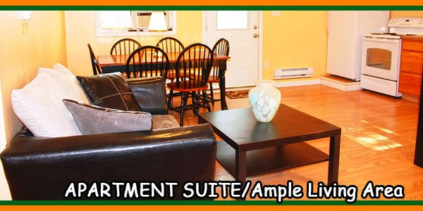 APARTMENT SUITE-Ample Living Area