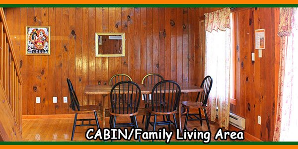 CABIN-Family Living Area