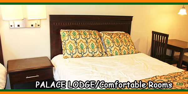 PALACE LODGE-Comfortable Rooms