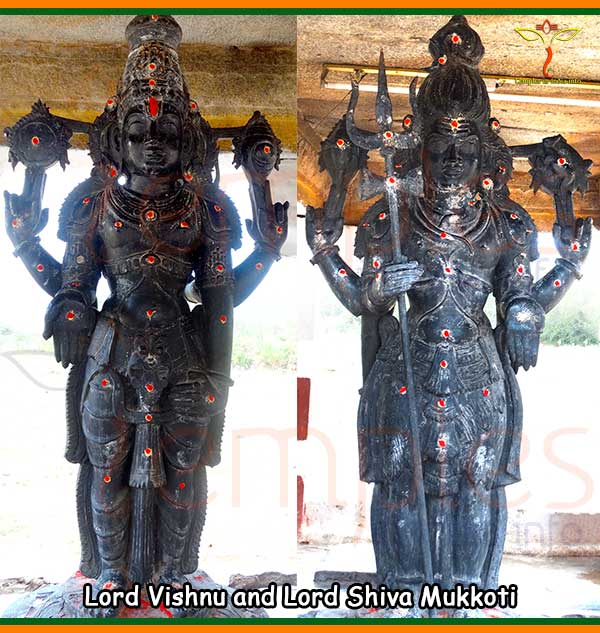 Lord Vishnu and Lord Shiva Mukkoti