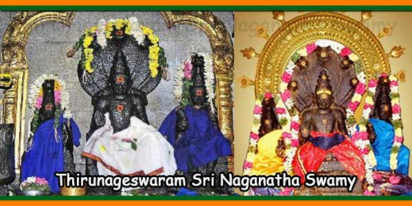 Thirunageswaram Sri Naganatha Swamy